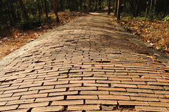 Old brick walkway Royalty Free Stock Photos