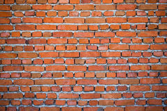 Old brick wall. A detailed view of an old brick wall Royalty Free Stock Image