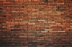 The old brick wall. Royalty Free Stock Photos