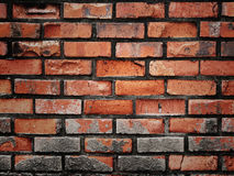 Old brick wall. Royalty Free Stock Images
