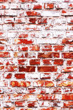 Old brick-wall. With whitewash stains Stock Images