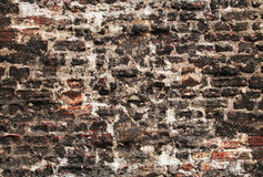 Old brick wall background Royalty Free Stock Photography