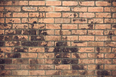 Old brick wall background. Old grain brick wall background Royalty Free Stock Photo