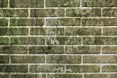 Old brick wall background. Royalty Free Stock Photo