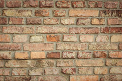 Old brick wall . Royalty Free Stock Images