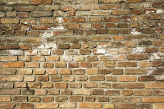 Old brick wall background. Royalty Free Stock Photography