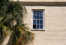 Broken Window in Old Brick Wall by Pine Tree Royalty Free Stock Image