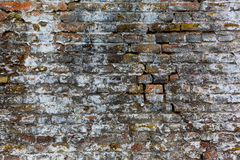 Old brick wall, brown and white texture. Old brick wall, broken, texture Stock Photo