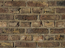 Old brick wall close up. In the afternoon sun Royalty Free Stock Photo