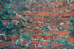 Old brick wall close-up photo. Vintage texture royalty free stock photos