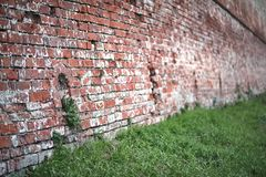Old brick wall with a crack. Old red brick wall with a crack and traces of paintrr Royalty Free Stock Photos