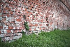Old brick wall with a crack. Old red brick wall with a crack and traces of paintrr Royalty Free Stock Photography