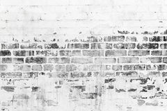 Old brick wall with damaged white paint layer. Closeup background photo texture Royalty Free Stock Images