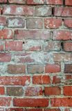 The old brick wall in the day on a street. The old brick wall in the afternoon on a street Stock Photography