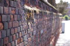 An old brick wall Stock Photos