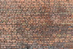Old brick wall front view Royalty Free Stock Images