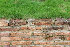 Old Brick Wall And Green Grass Stock Photos