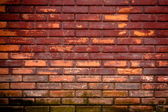 Old brick wall, grunge background Royalty Free Stock Image