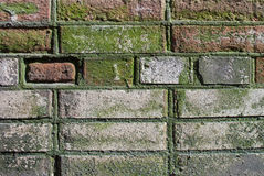 Old brick wall of the house. Stock Photos