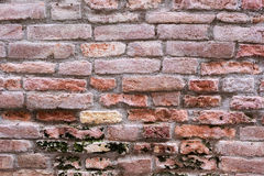 Old brick wall of house in Venice, Italy. Shallow DOF. Pink, backgraound, Old, brick, wall, house, Venice, Italy Stock Image