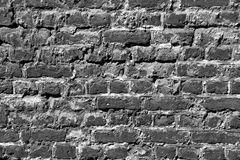 Old Brick Wall (monochrome) Royalty Free Stock Photo