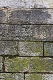 Old brick wall with moss Royalty Free Stock Photography
