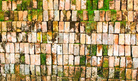 Old Brick wall with moss Royalty Free Stock Image