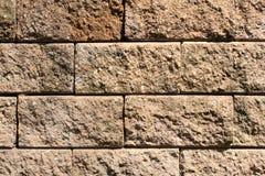 Old Brick Wall. Brick wall in national park Stock Photos