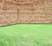 Old Brick Wall and New Green Grass Stock Images
