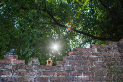Old brick wall, old ceramic doll Royalty Free Stock Images