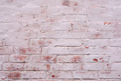 Old brick wall painted background. Stock Photos