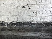 Old brick wall painted with white paint Royalty Free Stock Photo