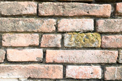 Old brick wall pattern background Stock Photos
