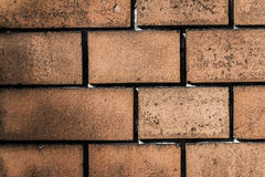 Old brick wall pattern closeup Royalty Free Stock Photos