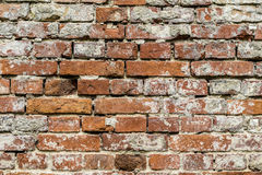 Old brick wall pattern closeup Royalty Free Stock Images