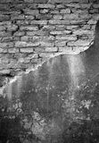 Old brick wall, perfect grunge background Stock Images