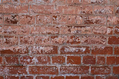 Old brick wall. Old brick red wall aged  architecture  background Royalty Free Stock Photos
