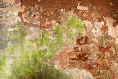 Old brick wall with shabby paint. Old brick wall with peeled paint Stock Images