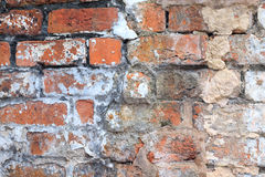 Old brick wall showing degraded pointing Royalty Free Stock Photo
