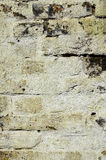 Old brick wall Royalty Free Stock Photos