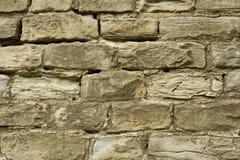 Old brick wall. Texture. Stock Image