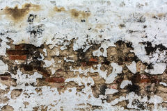 Old brick wall. For texture or background,back and white Stock Photo