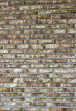 Old brick wall texture Royalty Free Stock Photography