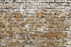 Old brick wall texture. Royalty Free Stock Photos