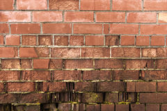 Old brick wall, under construction texture concept Royalty Free Stock Photo