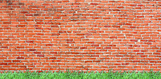 Old brick wall with verdant grass Stock Photography