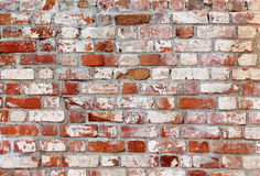 Old brick wall with white and red bricks Royalty Free Stock Photos