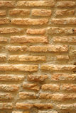 Old bricked wall Royalty Free Stock Photos