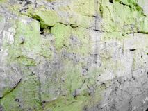 Old bricks in green paint with crevices with gray spots stock photo