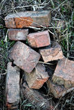 Old bricks heap on a grass Royalty Free Stock Photos